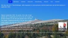 Screenshot website Theo